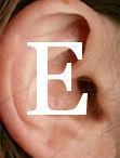 Ear Learning Modules